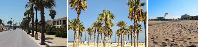 Summer in Valencia