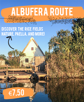 Albufera Valencia route rice fields
