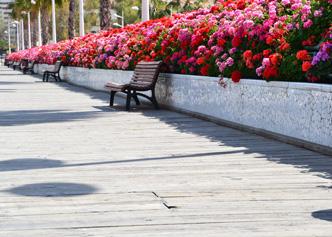 Flowerbridge Valencia