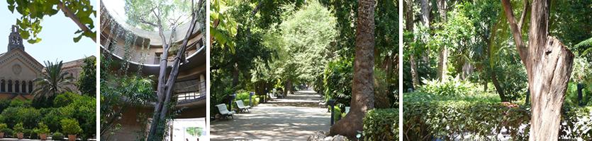 Jardin Botanico in Valencia